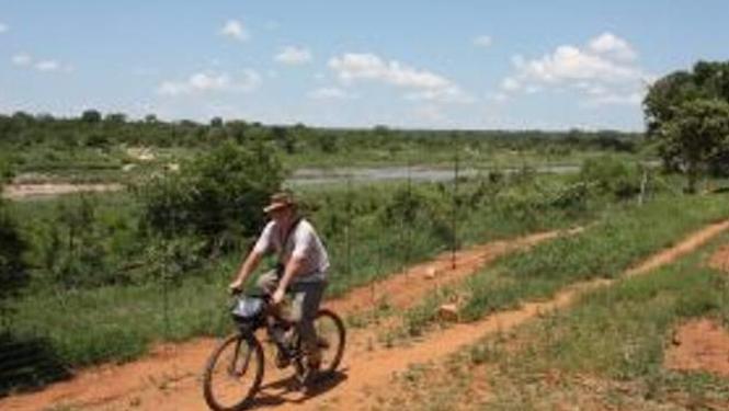 activities mountain biking